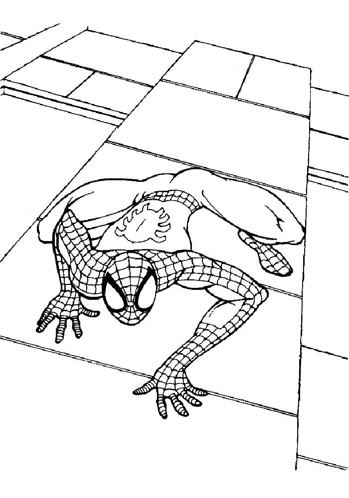 Раскраска человек паук распечатать бесплатно