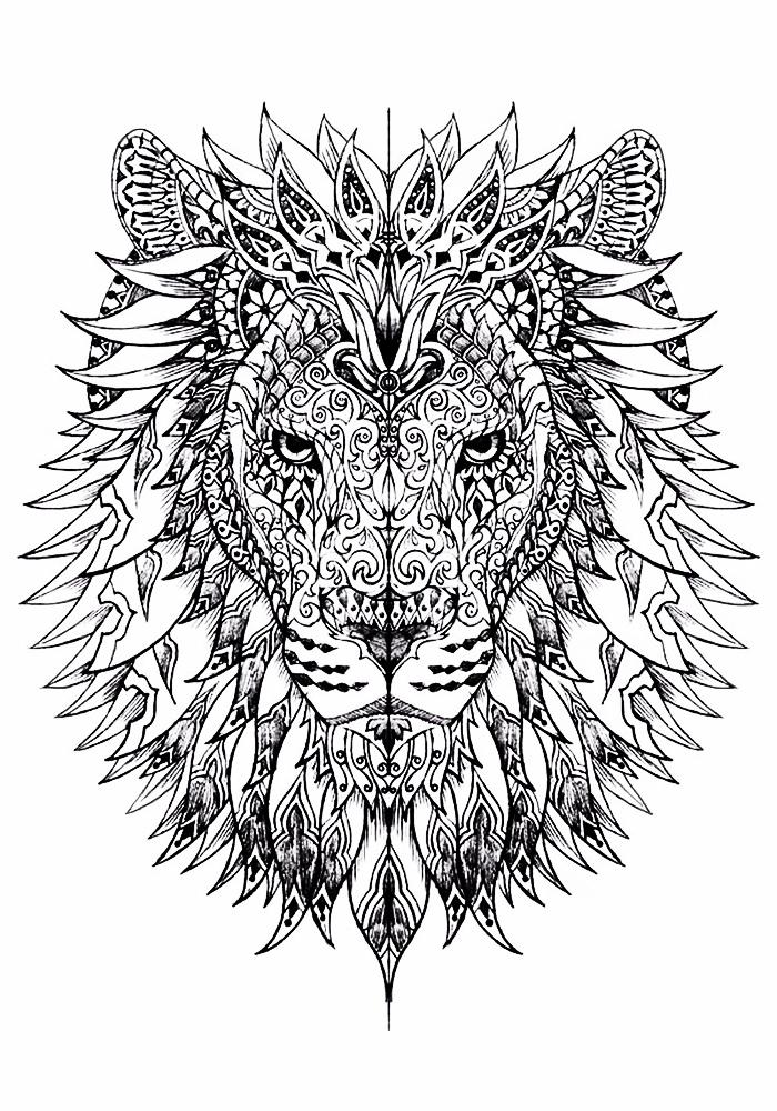 Картинки leon