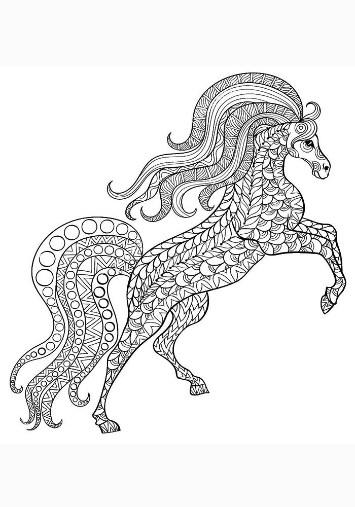 Volwassen Kleurplaten Paarden Раскраски антистресс лошади распечатать