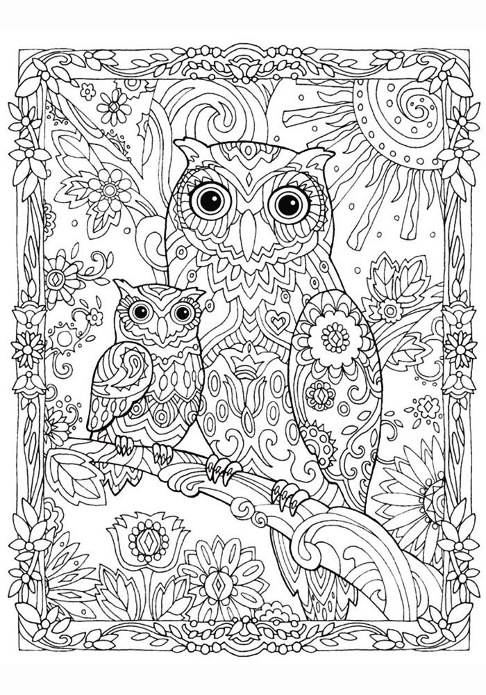 раскраски антистресс совы распечатать