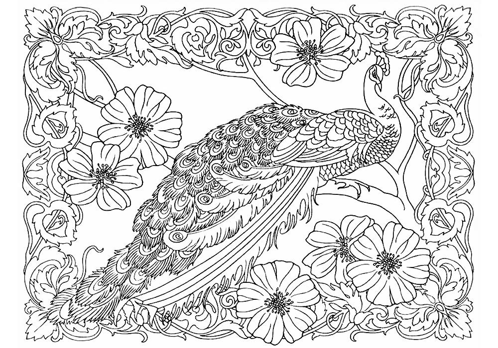 Птицы и животные раскраски детские: Антистресс раскраски животные и птицы