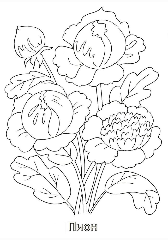 Раскраски к 8 марта цветы