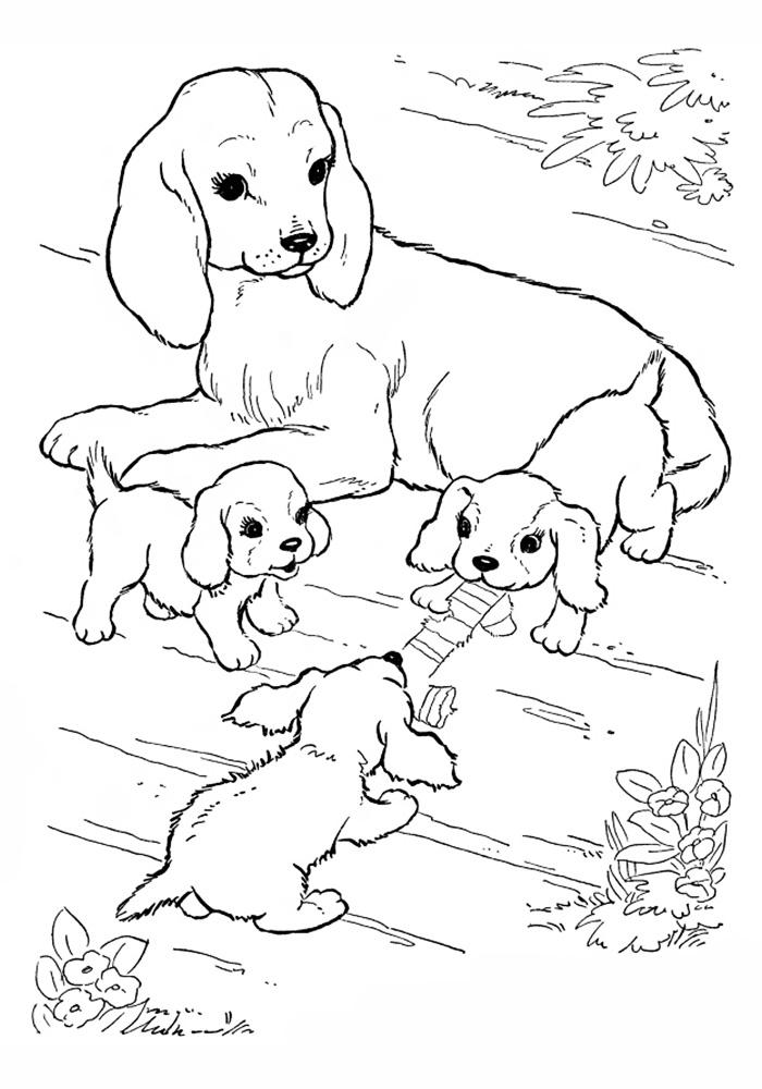 Картинки гена и чебурашка раскраска