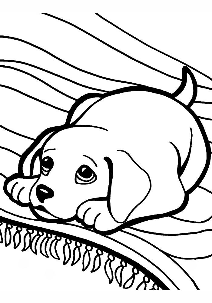 Раскраска щенков онлайн