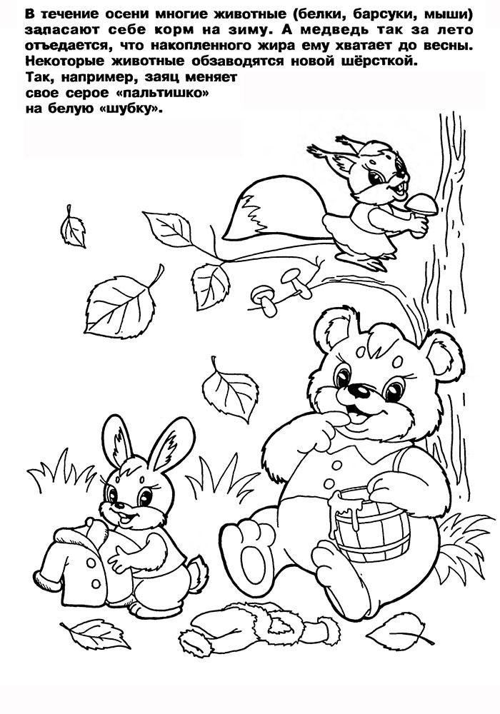Картинки для детей лес осенью с животными