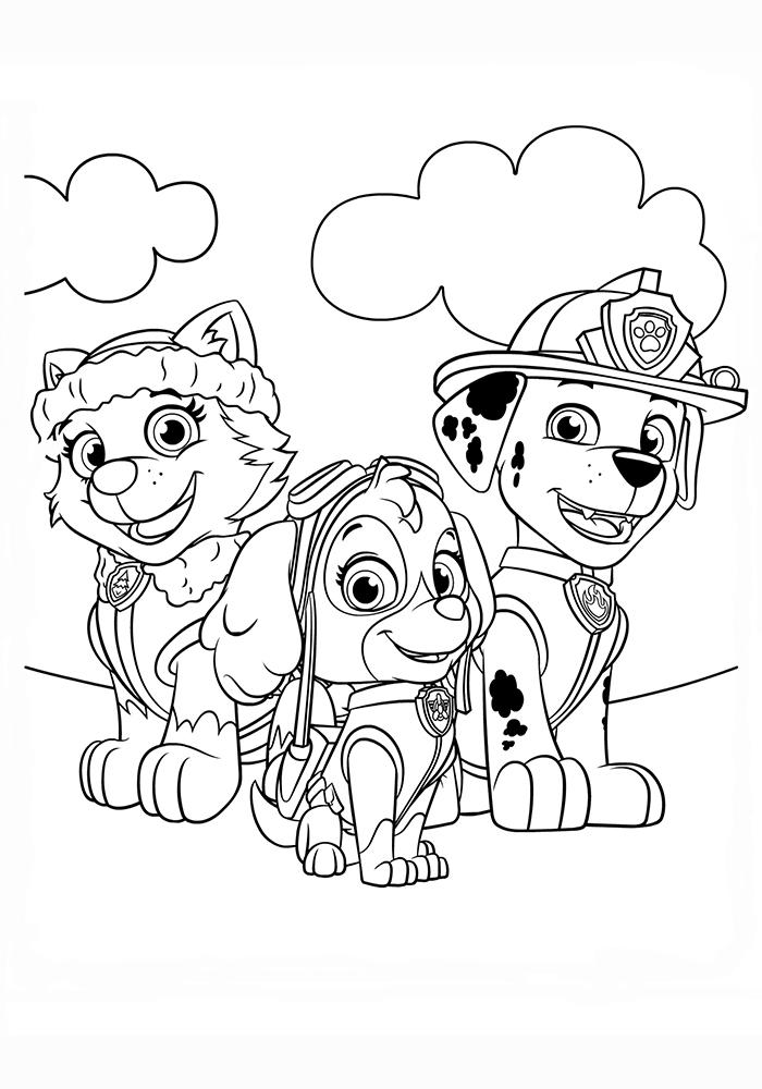 Раскраска формата а4 щенячий патруль