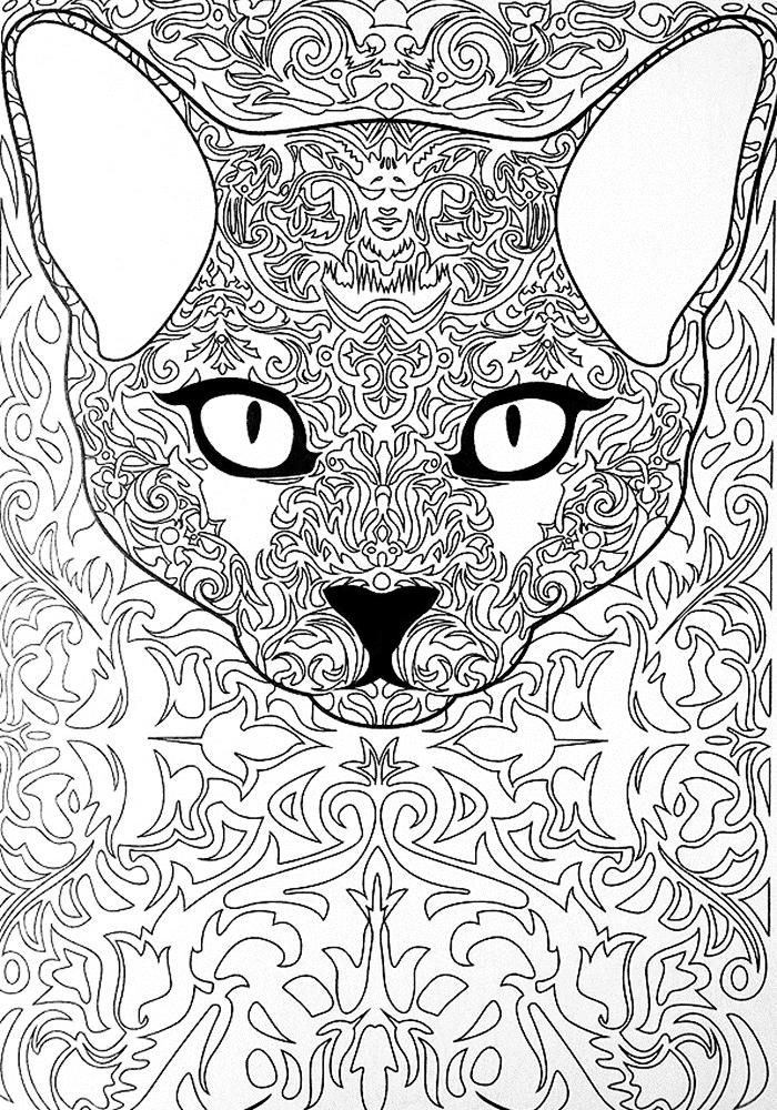 Картинки антистресс кошки
