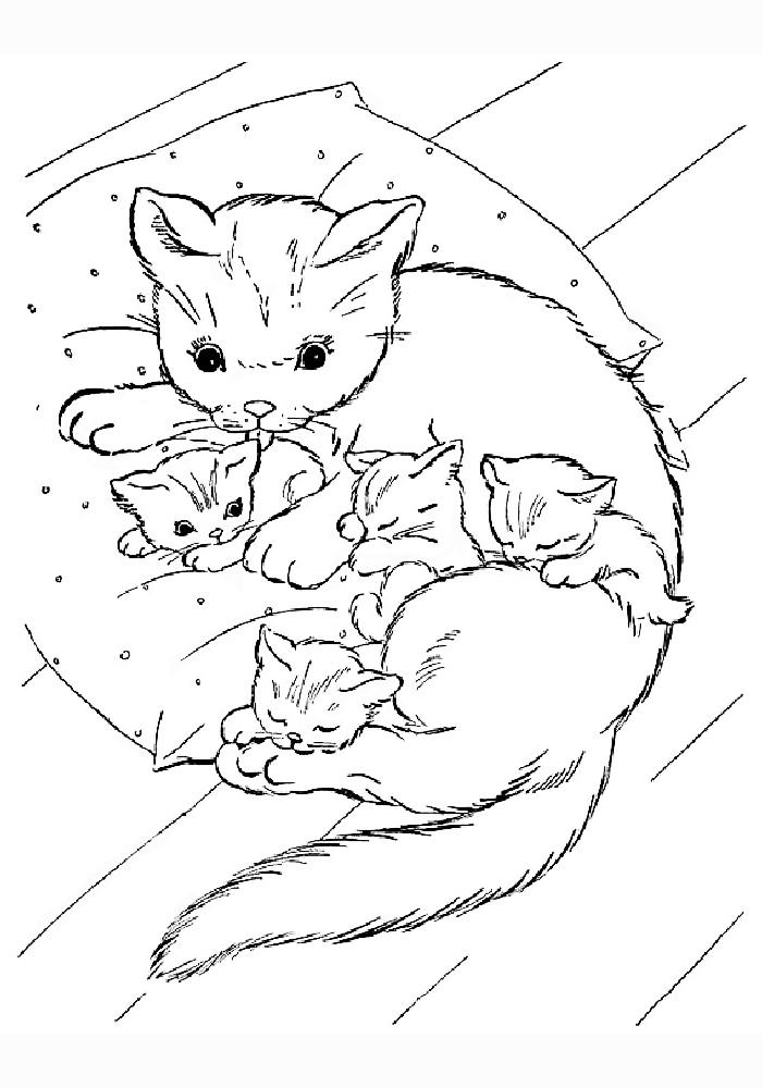 Сантой клаусом, картинки кошка и котенок для раскраски