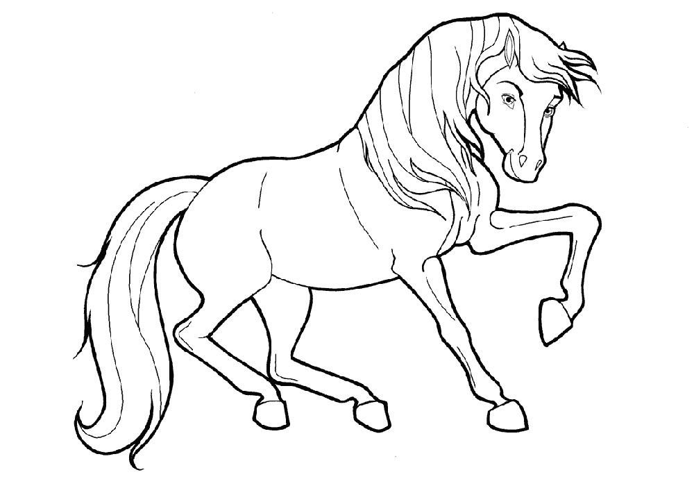 обладая распечатать изображение коня вот, девочки, наконец-то